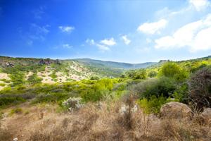 Sardinia nature 1