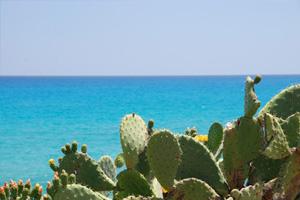 Sardinia nature 2