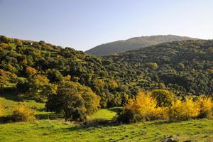 Sardinia nature 3
